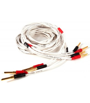 Black Rhodium Twist Speaker Cable