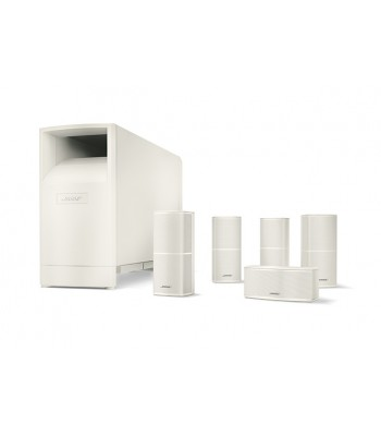 Bose Acoustimass® 10 Series V